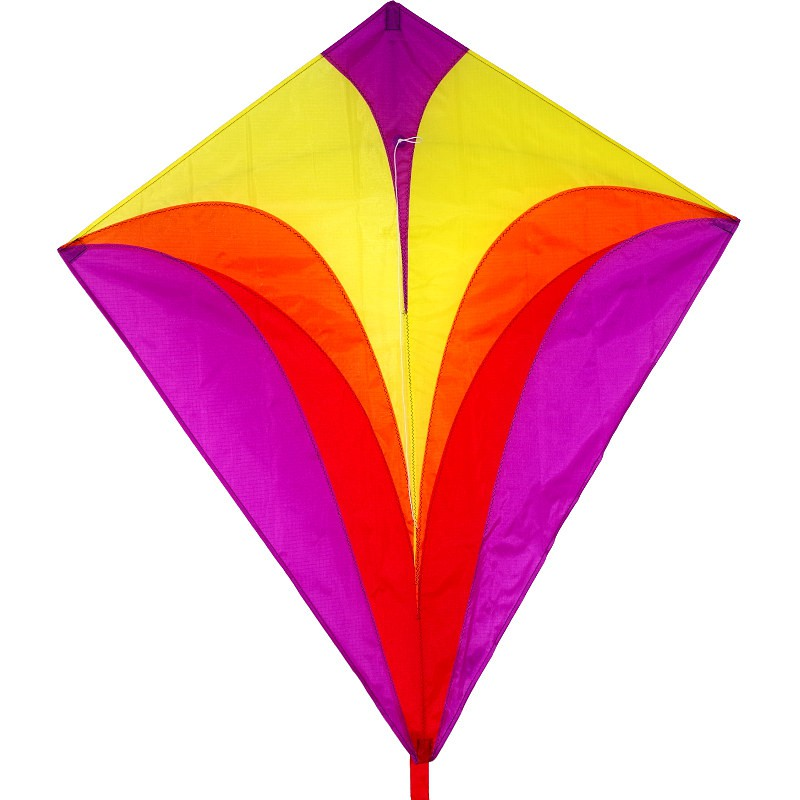 Cerf-volant monofil Colours in Motion Eddy XL Purple violet