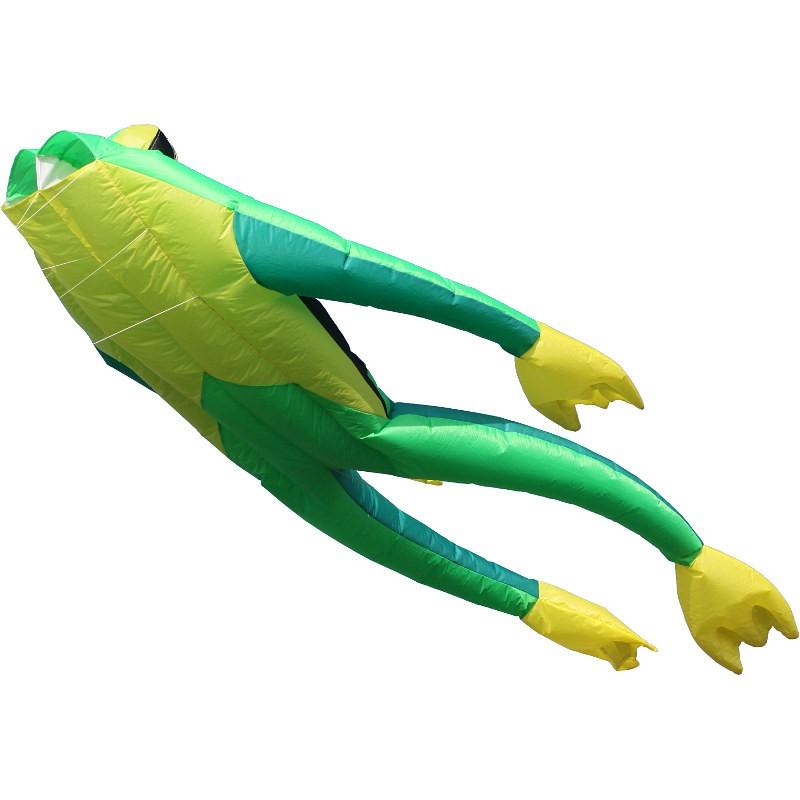 Wolkenst/ürmer Fritz The Frog Cerf-Volant Simple Ligne sans perches